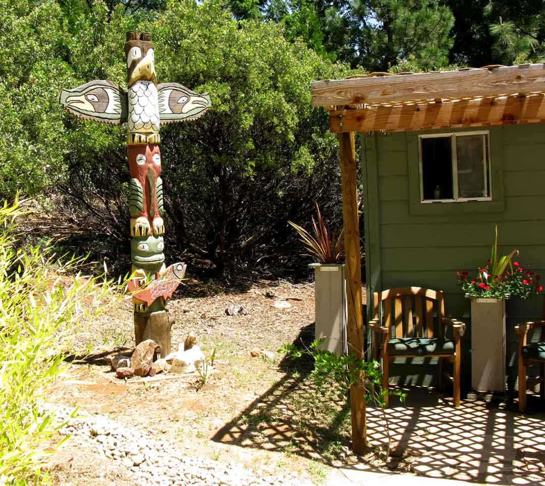 Garden Ideas | Carla Barrett