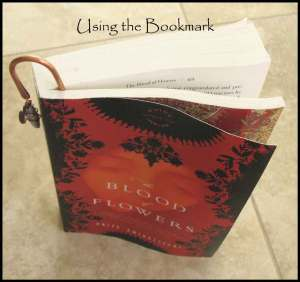using-the-bookmark