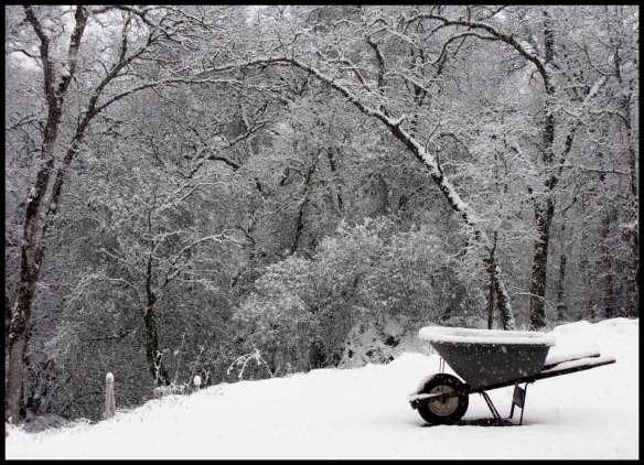 snowwheel2