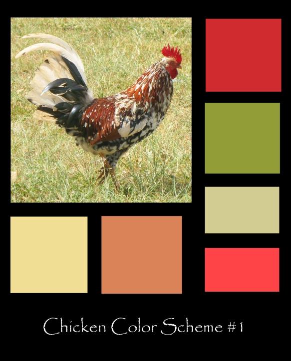 chicken scheme copy